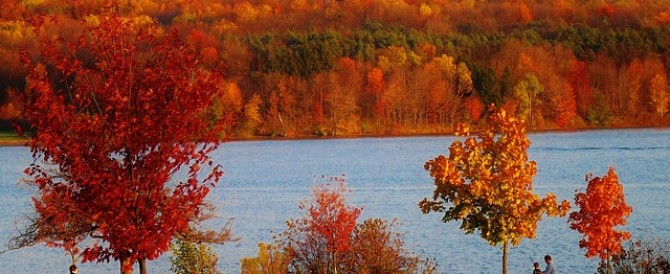Why Autumn is Awesome in Central Virginia